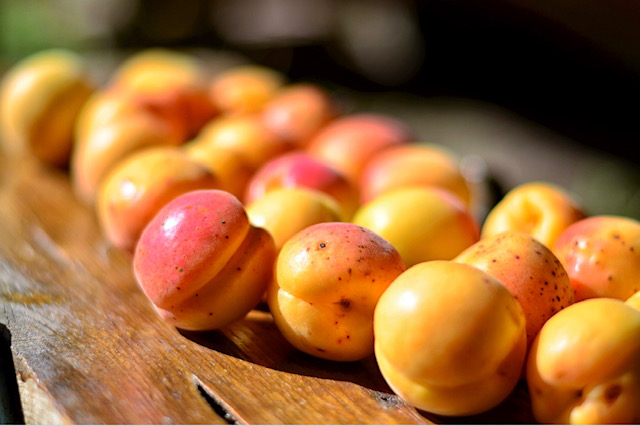 apricot oil for end of split-ends. DIY recipe