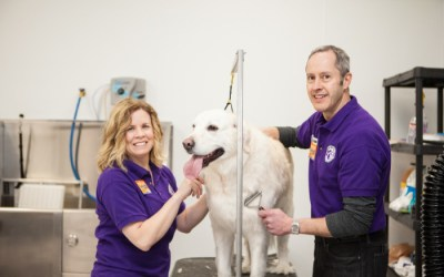 Wag N' Wash is Featured on KXRM-TV