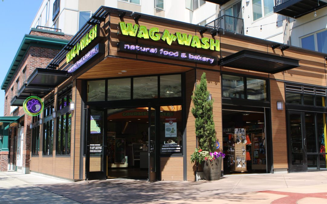 Find the Perfect Career Franchising with Wag N' Wash