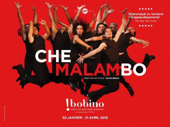 Che Malambo 2019
