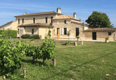 Château-La-Renommée-el-mejor-vino-es-el-que-se-comparte