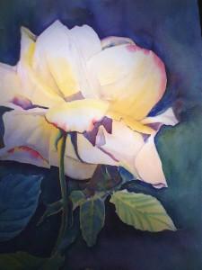 Loy's Rose