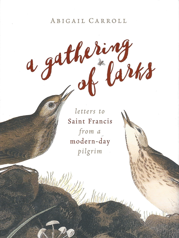 a gathering of larks by abigail carroll back (1)
