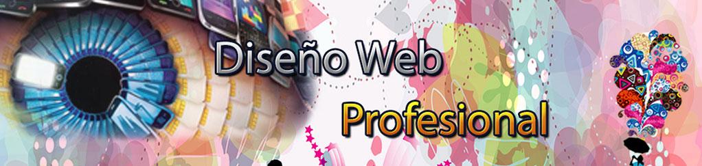 Diseño-web-profesional