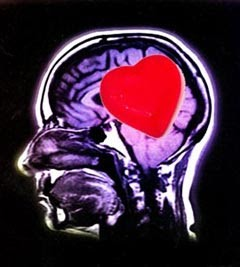 Cómo desarrollar la Inteligencia Emocional y lograr éxito personal