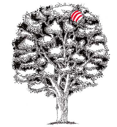 Balon en el arbol