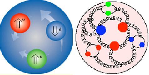 Dibujo20090626_spin_nucleon_proton_problem_3_quarks_multiple_gluons