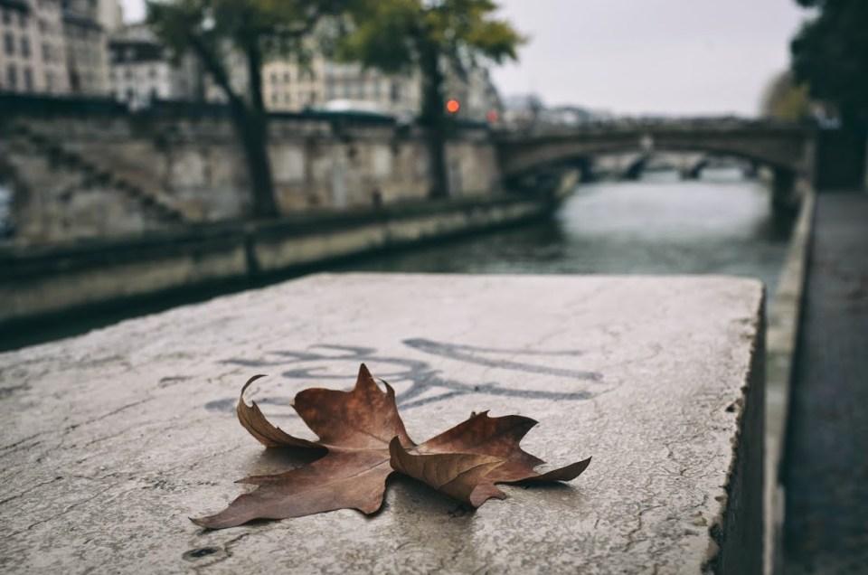 Notre-Dame de Paris & x100s