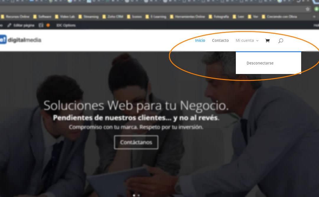 Menú en WordPress según roles de usuario