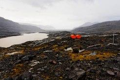 © François Lepage - L'Arbec de la Mortadelle au pied du glacier Cook, Archipel de Kerguelen, Réserve naturelle des T.A.A.F.