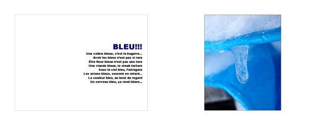 10 ExpoBiblio Bleu_Intro