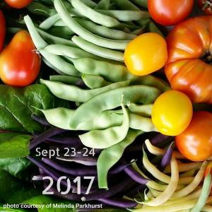 Hudson Valley VegFest @ Gold's Gym | Poughkeepsie | New York | United States