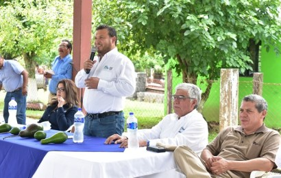 Gobierno del Estado Coadyuva con Productores para Incrementar la Producción de Aguacate