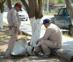 Rehabilitan alumbrado público en la colonia Fomento