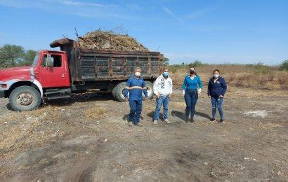 Realizan Limpieza en Área Verde de la colonia 1° de Mayo