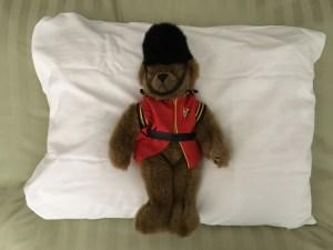 Bear on pillow