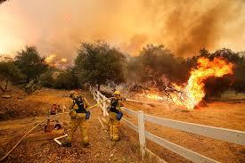 Wildfires 11.18
