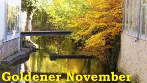 frank-c-mey-goldener-november-in-erfurt