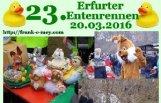 erfurter_entenrennen