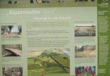 alperstedter_ried