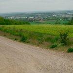 landschaftsschutzgebiete_erfurt-02