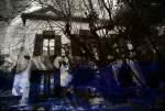 Les secrets du Jardin de Paul Cézanne