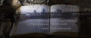 il-y-a-du-larsen-dans-l'air -tedeschi - Frank Lovisolo - Exposition virtuelle le vol d'une nuit