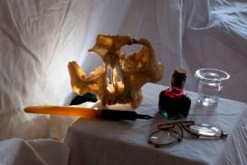 L' Ama et le poulpe - lovisolo - Le cauchemar du mari de l'Ama