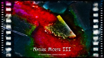 Art vidéo - Charlie Jazz Festival - Lovisolo - Nature Morte III
