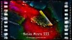Nature Morte III – De Rerum Natura – Lucrèce