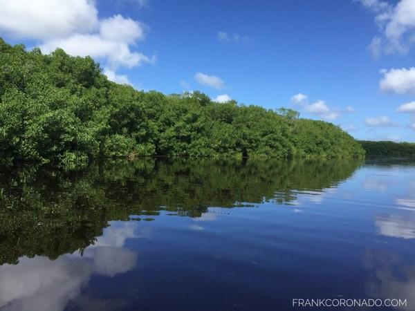 Vista de los manglares de Celestún Yucatán