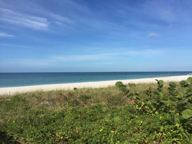Southwest Florida Beaches Rock