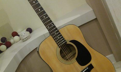 Kiso-Suzuki 9651