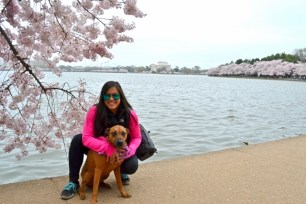 With Chloe at the Cherry Blossom 2016