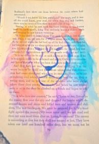 Watercolor lion bookpaper