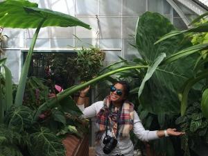 Biltmore Conservatory Giant Leaf