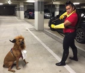 Choose Belle, Gaston or the Beast
