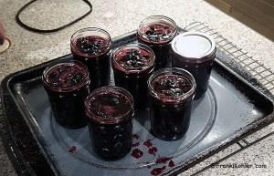 06-19-16 cherry jam 2