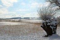 Blick über den winterlichen Bodden bei Middelhagen(c) Jost Grünheid (1)