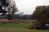 Blick auf das Tropenhaus der Loki-Schmidt-Gewächshäuser im Botanischen Garten Rostock (c) FRank Koebsch (1)