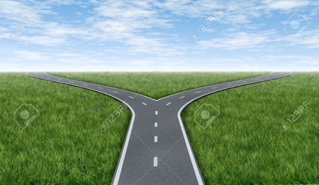 10609230-Cross-roads-horizon-with-grass-and-blue-sky-showing-a-fork-in-the-road-or-highway-business-metaphor--Stock-Photo.jpg