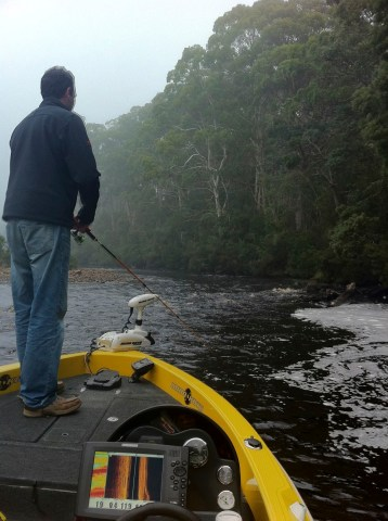 Chasing Trout up the Huon river