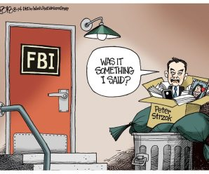 In the News – Finally, the FBI Fired Peter Strozok