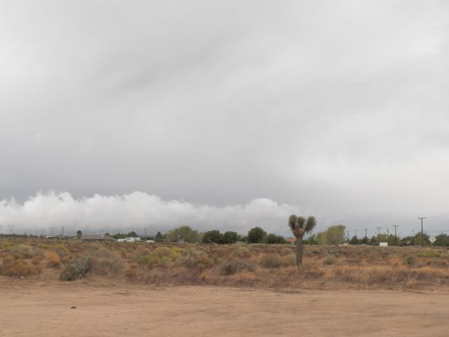 Winter Clouds in the desert