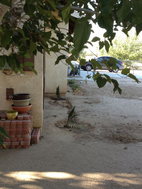 View of dirt yard, stack of bricks and planting pots