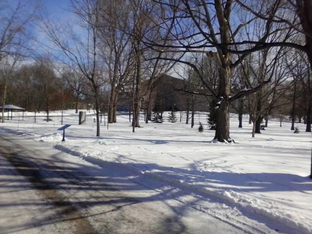 Winter at Rideau Hall, photoblogger William Kendall