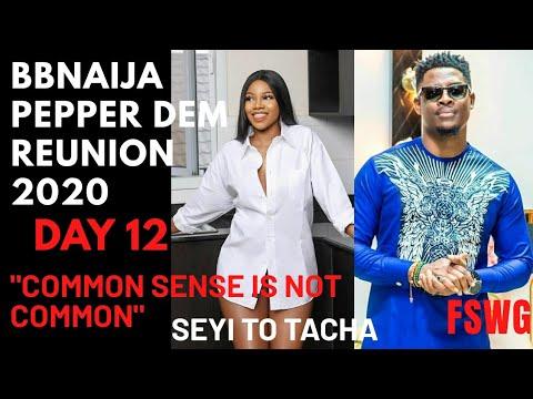 "BBNAIJA REUNION 2020 DAY 12 | ""COMMON SENSE IS NOT COMMON"" SEYI 2 TACHA! AVALA ISILOMO FIGHT OVER MAN!"