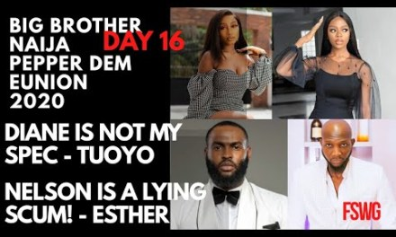 "BBNAIJA REUNION 2020 DAY 16 | NELSON IS A LYING SCUM! – ESTHER | ""DIANE IS NOT MY SPEC"" -TUOYO"