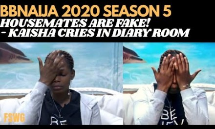 BBNAIJA 2020: BBNAIJA LOCKDOWN HOUSEMATES ARE FAKE
