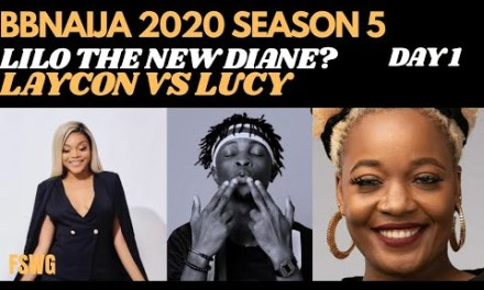 IS LILO THE NEW DIANE? LUCY vs LAYCON | NENGI & OZO | BBNAIJA 2020